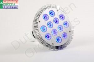 LED stuurlicht DS04