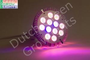 LED stuurlicht DS06