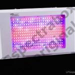 LFG spectrabox pro II 250 350 600 watt - 6